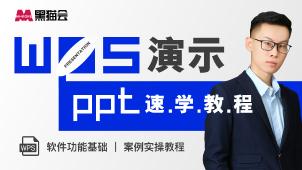 WPS演示·PPT速学教程